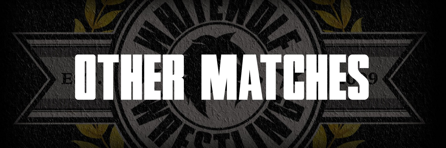 Other Matches