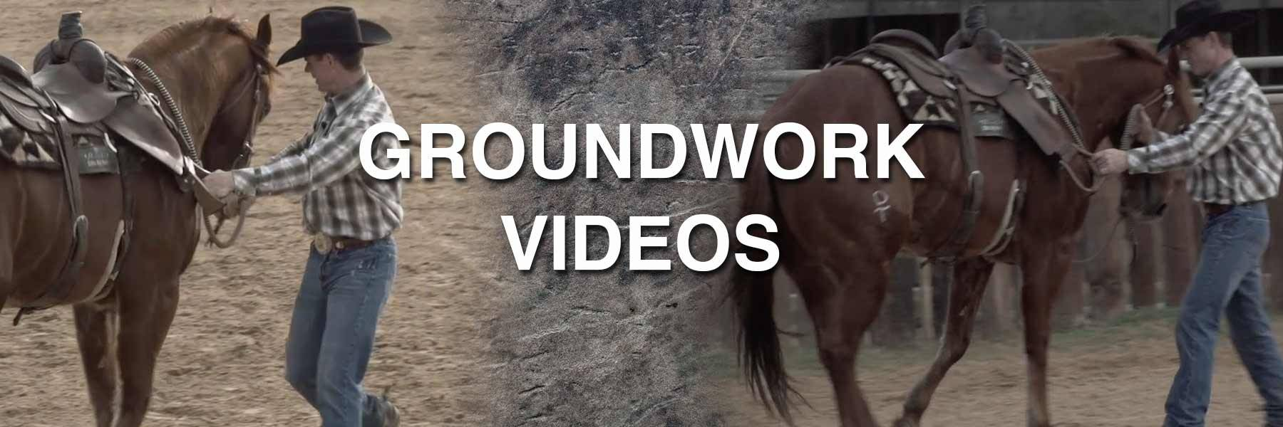 Prepare your horse for a ride with these groundwork videos.