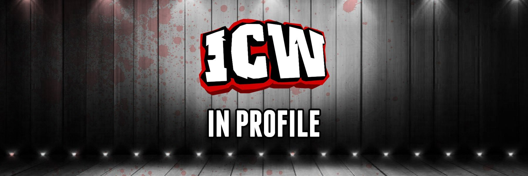 In-depth, long-form interviews with the top stars of ICW