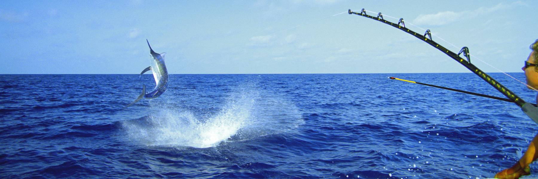 Offshore Lures, Spreads and Rigging