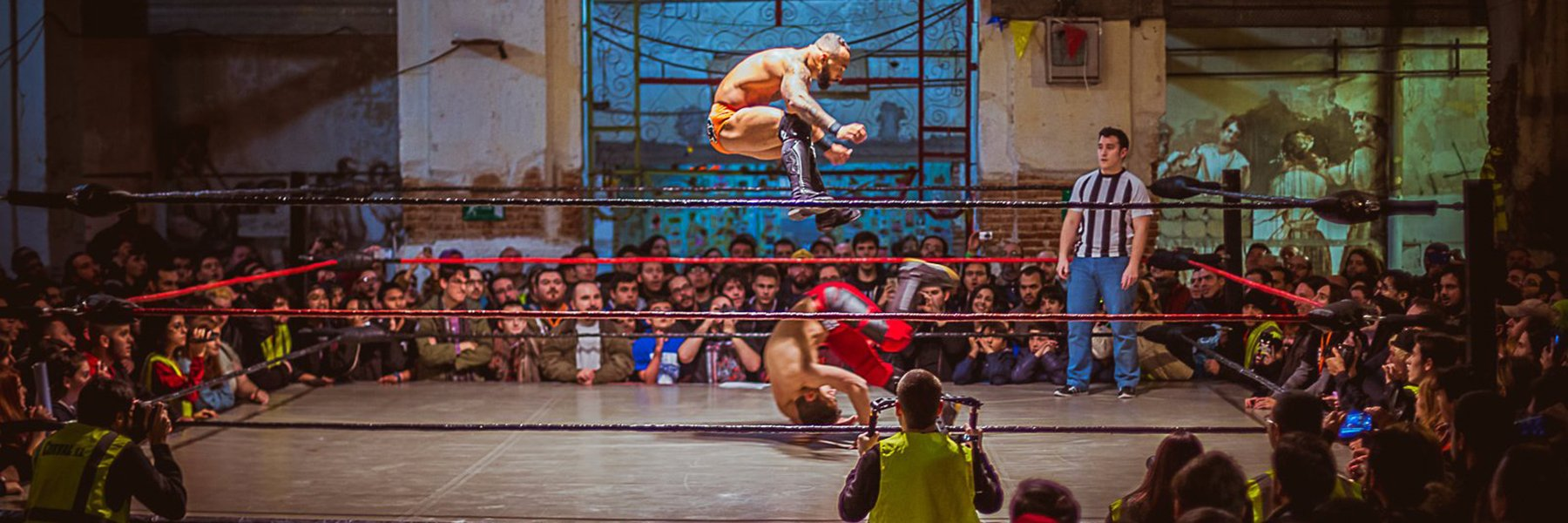 White Wolf Wrestling from Spain
