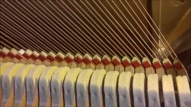 Inside workings of a piano