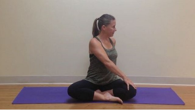 Postnatal Practice for the Spine