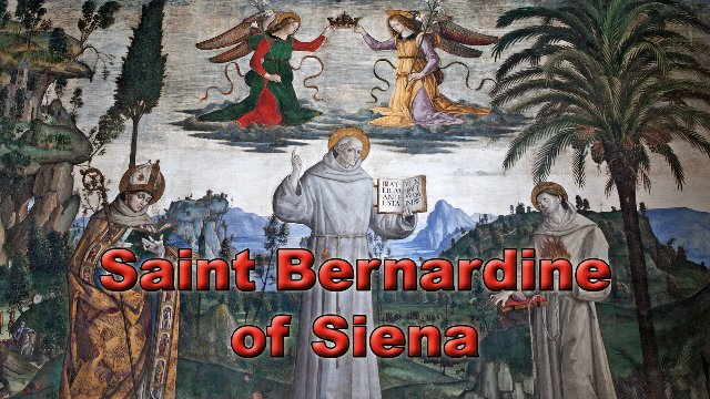 Saint Bernardine of Sena