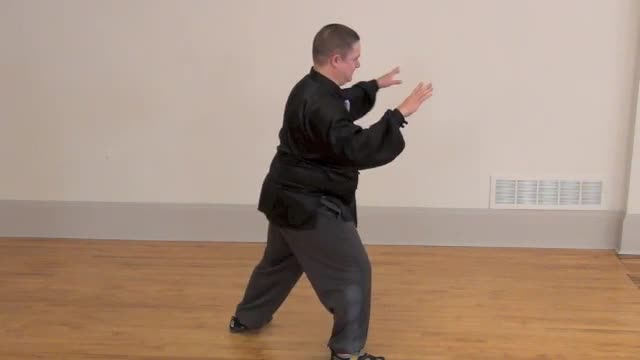 Level 1 - Lesson 15  ~ Double Whip and Fist Under the Elbow