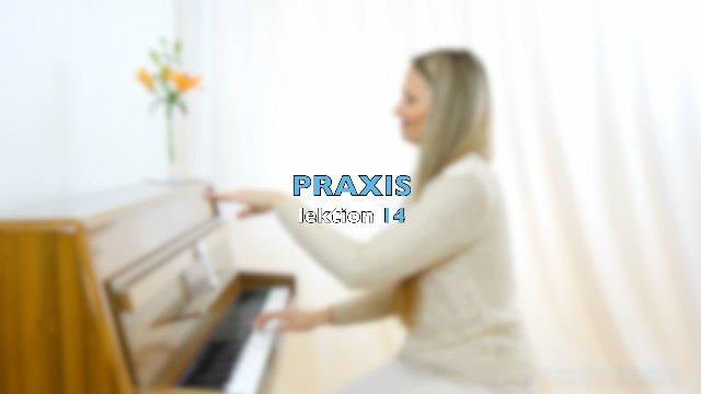 PRAXIS - LEKTION 14