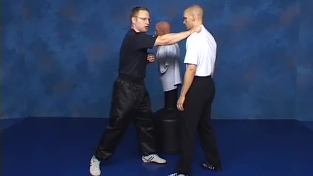 Combat Sanshou 1: Striking