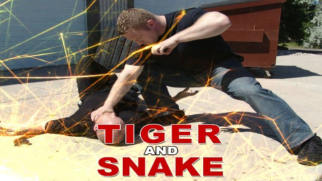 Combat Sanshou 4: Tiger & Snake