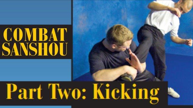 Combat Sanshou 2: Kicking