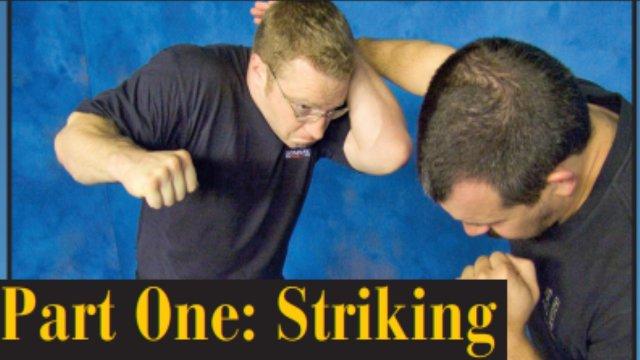 Combat Sanshou 1: Striking
