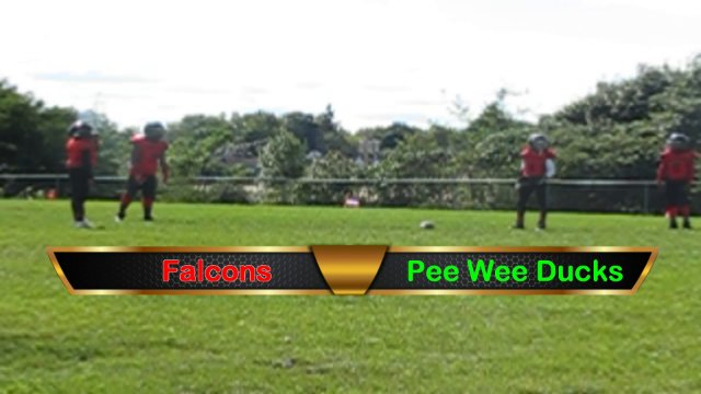 Pee Wee Ducks VS Falcons Sat Sept 29th