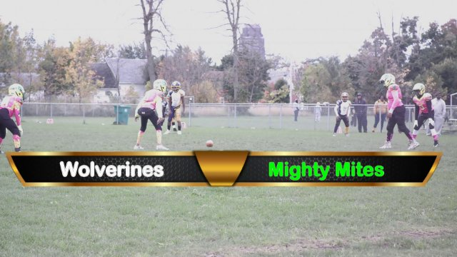Mighty Mite Ducks VS Wolverines Sat Oct 13th