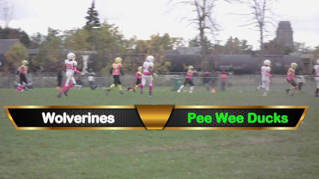 Pee Wee Ducks VS Wolverines Sat Oct 13th