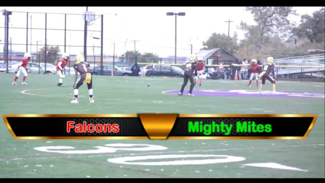 Mighty Mite Ducks VS Falcons Playoff Game Sat Oct 27th