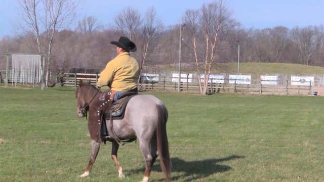 2404_Natural Riding Aids Part1