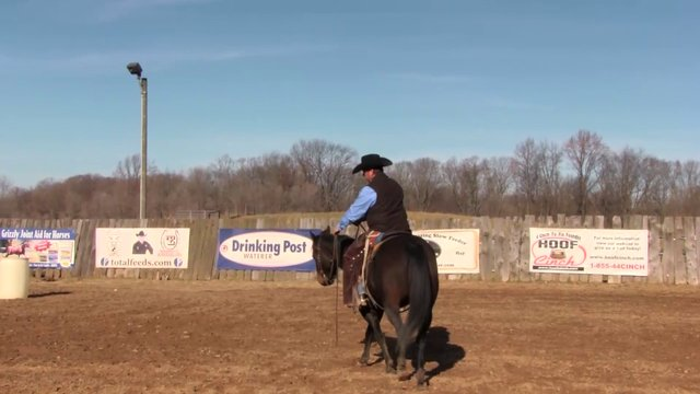 1704 Two handed rein management
