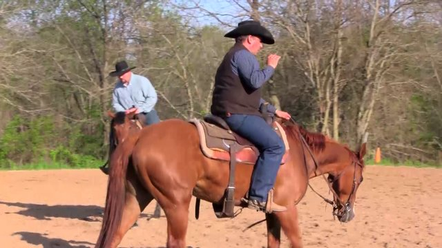 1801 Teaching your horse to follow a feel