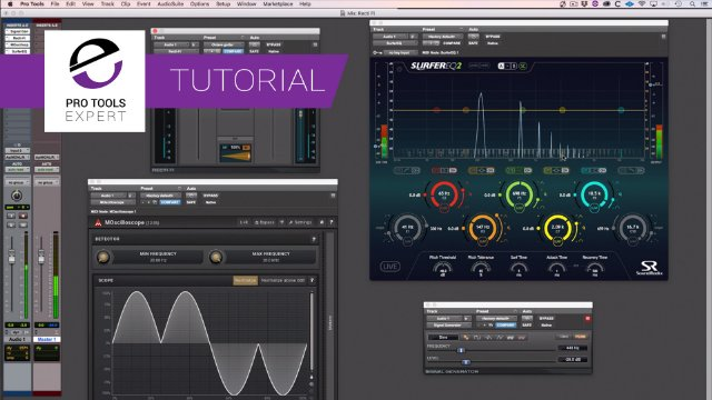 Make An Octave Effect Using Avid Recti-Fi -  You Can See How It Works In This Expert Tutorial.