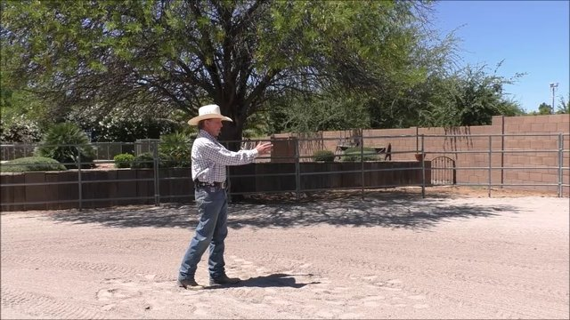 Episode 8 Instructional Step 2 PreGroundwork Lesson 5 Importance of Timing and Placing Feet