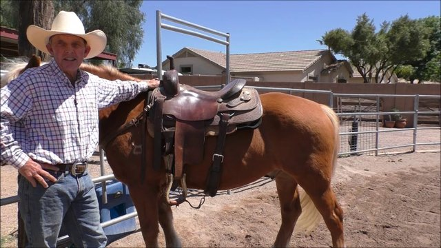 Episode 12 Instructional Step 2 Independent Seat Lesson 4 Saddle Fit and Rider Equipment Part 1