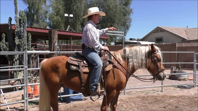 Episode 13 Instructional Step 2 Independent Seat Lesson 5 Body Alignment and Posture Part 2