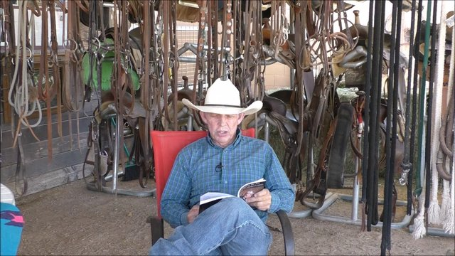 Episode 3 Lets Talk Horses Book Discussion Art of Equine Communication