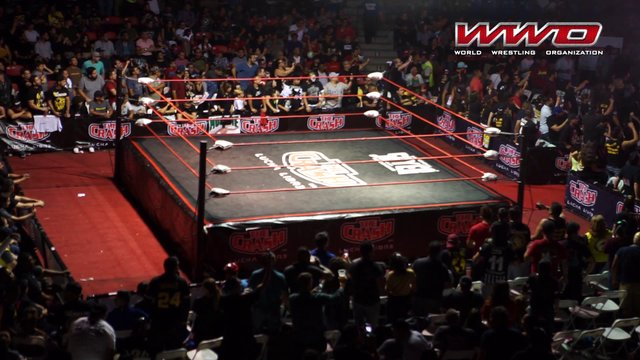 WWO Lucha Libre Total Destruction 2