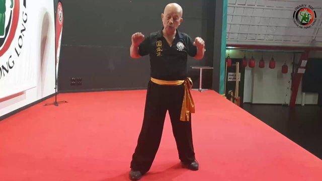 Beginner Belt Form