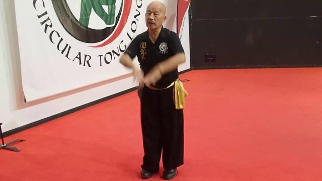 Qi Gong for Kung Fu and Tai Chi