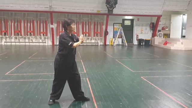 Tai Chi 24 - Section 2