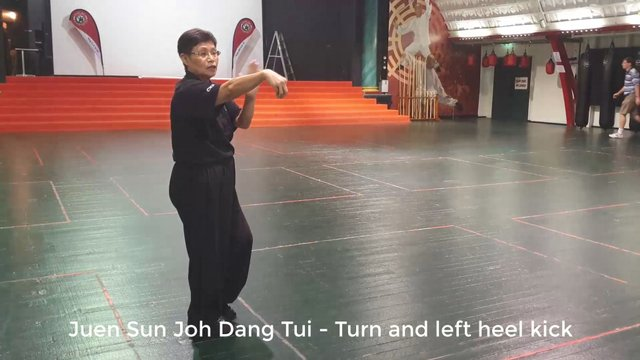 Tai Chi 24 - Section 3