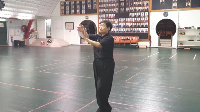 Tai Chi 24 - Section 4