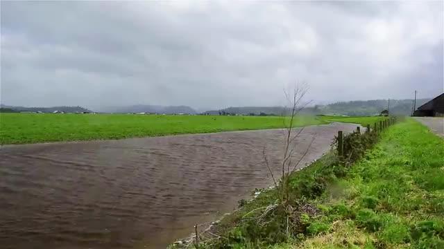 River Green Storm