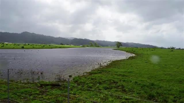 River in Ferndale