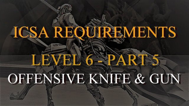 Level 6-Part 5-Offensive Weapon Use