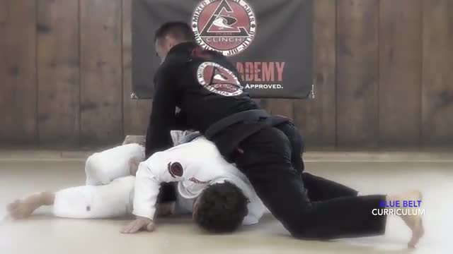 Blue Belt Curriculum Demonstration