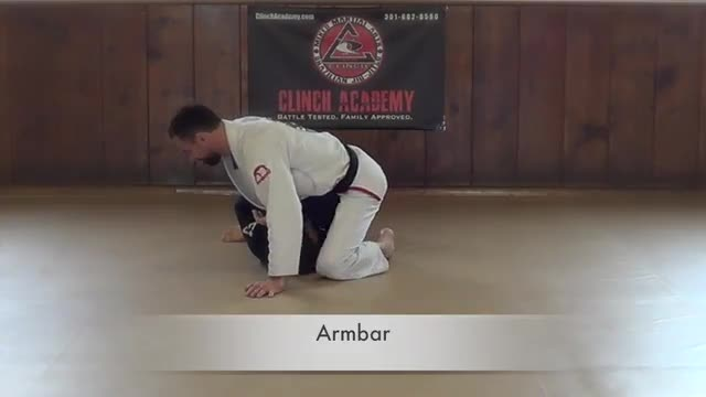 BJJ Curriculum Submissions from Mount
