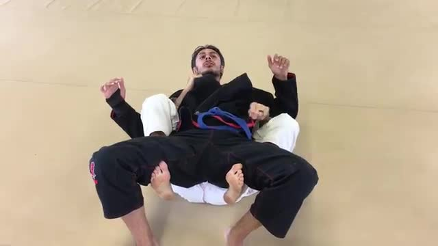 Bear Trap Calf Slicer from Bottom Back Control