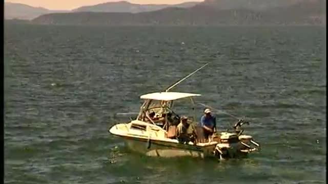 Flathead Lake Lake Trout