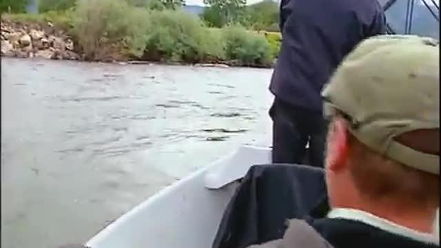 2010 Jefferson River