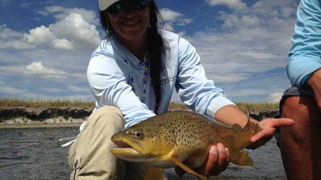 Beaverhead River Browns
