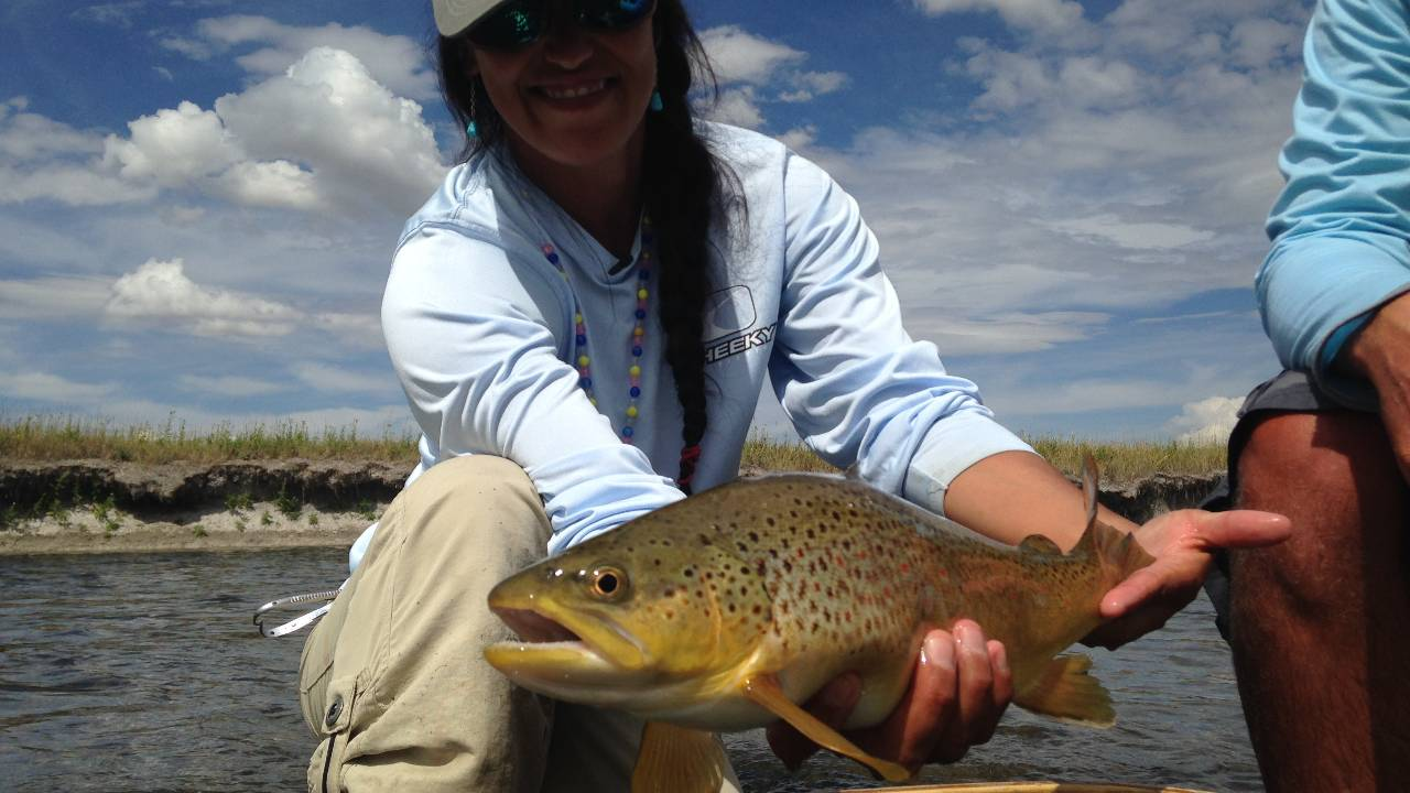 Beaverhead river browns trout tv watch online for just for Beaverhead river fly fishing