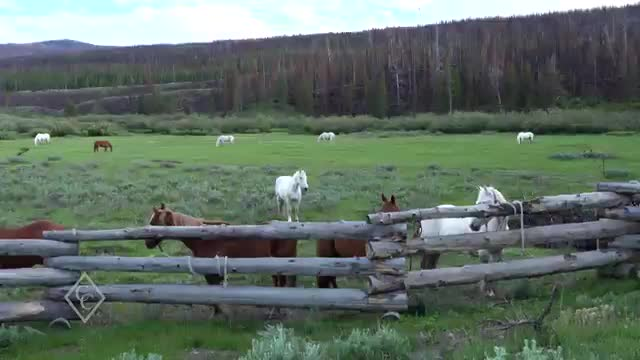 GIRLS_CAMP_WYOMING_PART2