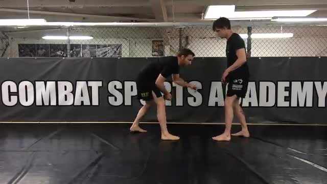Stance For Grappling