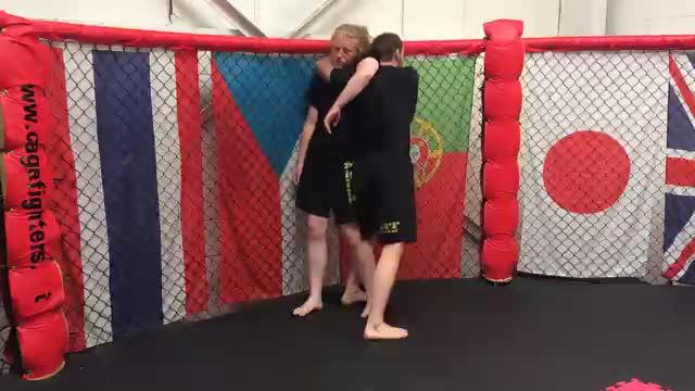 Cage Control > Single Leg > Head & Arm Choke