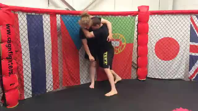 Striking From The Head & Arm Clamp To Takedown