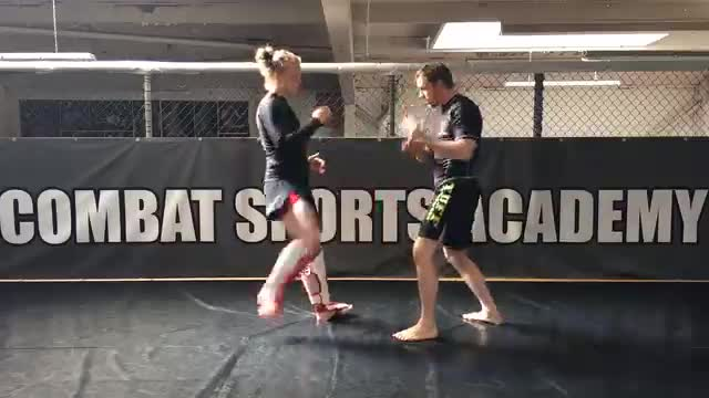 Arm Checking - Blocking Kicks With The Arms