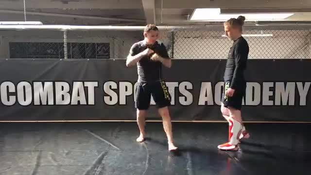 Evading Leg Kicks - Short Step > Long Step