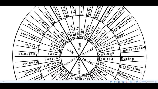 How to Use a Feeling Wheel with EFT - Nathan Martin