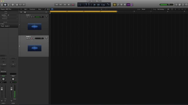 07 Audio Tracks